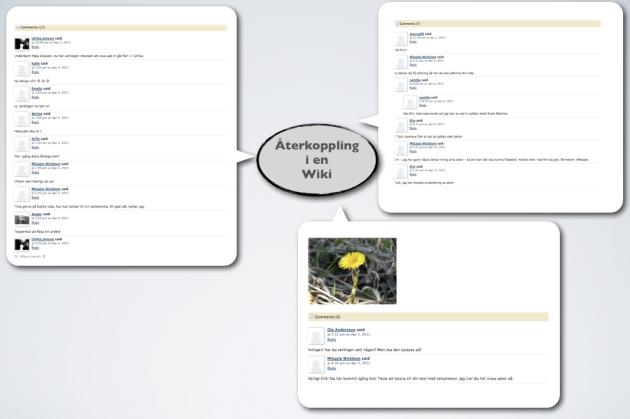 Kommentarsverktyg i en Wiki