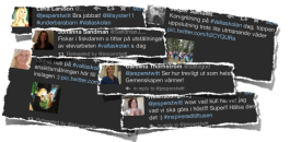 Några Twitter om Vallaskolans dag