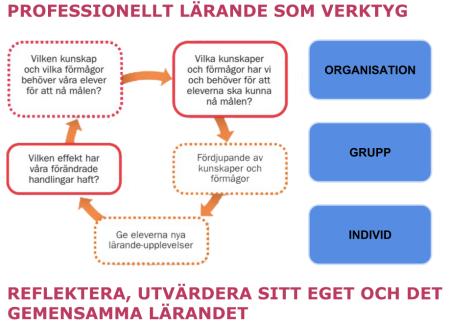 PROFESSIONELLT LÄRANDE SOM VERKTYG