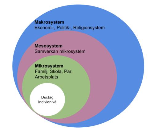 Bronfenbrenner's Microsystem, Mesosystem och Makrosystem